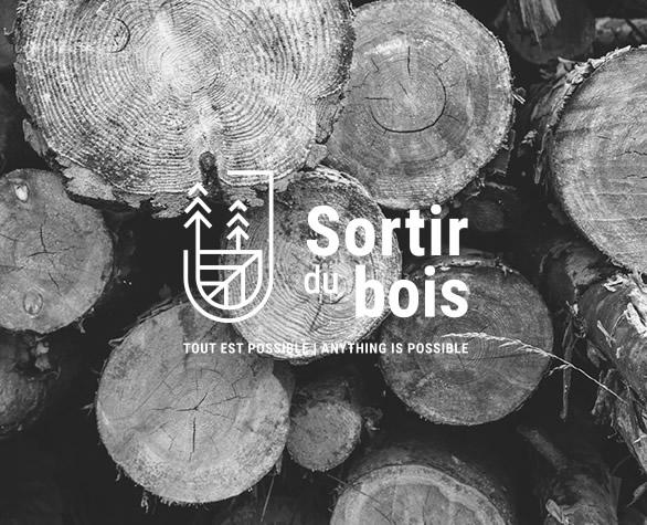 Logo Sortir du bois